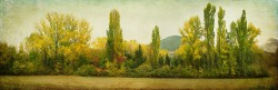 Cuadro panorámico paisaje de Urroz Villa, Navarra nº01
