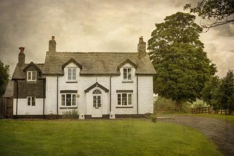 Cuadro Saint Harmon, Gales nº01