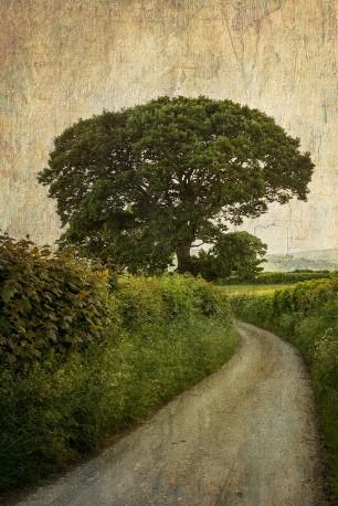 Cuadro Tylwch, Gales nº01