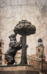 Imagen de la estatua del Oso y el Madroño Madrid nº01