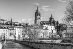 Cuadro horizontal de Salamanca nº02