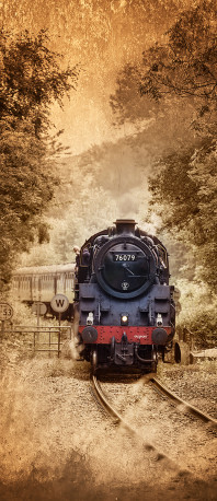 Cuadro de Tren en Whitby, Inglaterra nº01