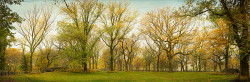 Imagen Central Park Nueva York nº01