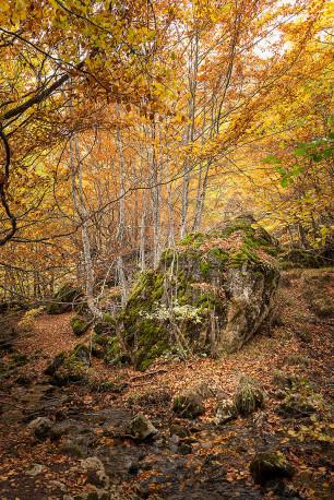 Fotografía vertical Somiedo, Asturias nº03